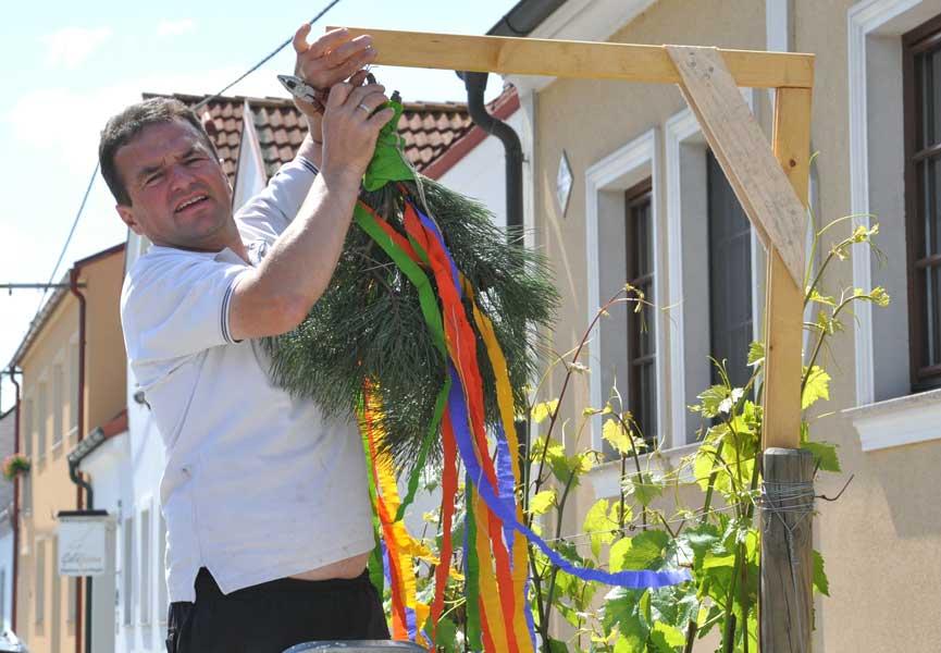 2012 Hoffest Weinbau Schabel