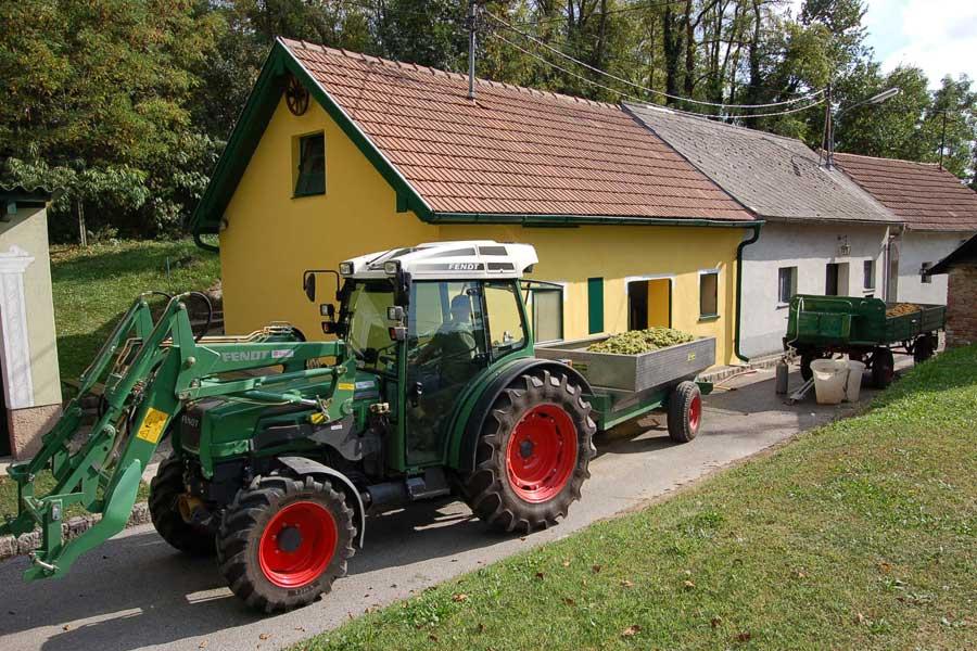 Weinkeller 2009 Familie Schabel