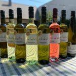8x Gold für Schabel-Wein